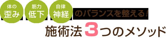 仙台市宮城野区はなまる整骨院の治療法3つのメソッド